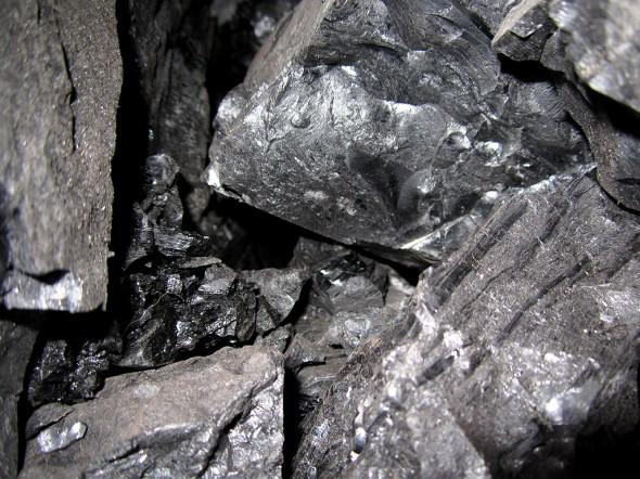 coal_alexander-g