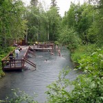 The Liard River Hot Springs is one of Northern B.C.'s top destinations. Photo by ukslim / Flickr